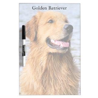 Golden Retriever Medium Dry Erase Board