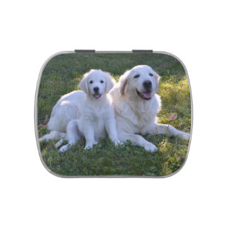 Golden Retriever Mom and Puppy Jelly Belly Candy Tin