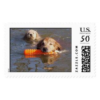 Golden Retriever Mom & Pup Postage