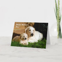 Golden Retriever Mother's Day Mom and Puppy Card