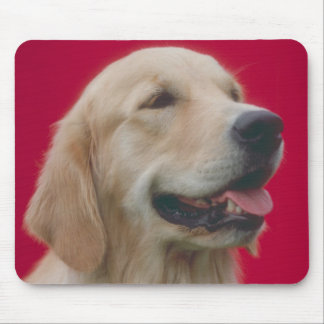 Golden Retriever Mouse Pad