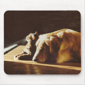 Golden Retriever Mousepad Cat Best Buddies