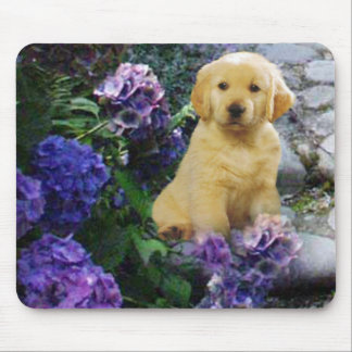 Golden Retriever Mousepad Hydrangea