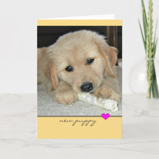 Golden retriever new puppy greeting card zazzle golden retriever new puppy greeting card m4hsunfo