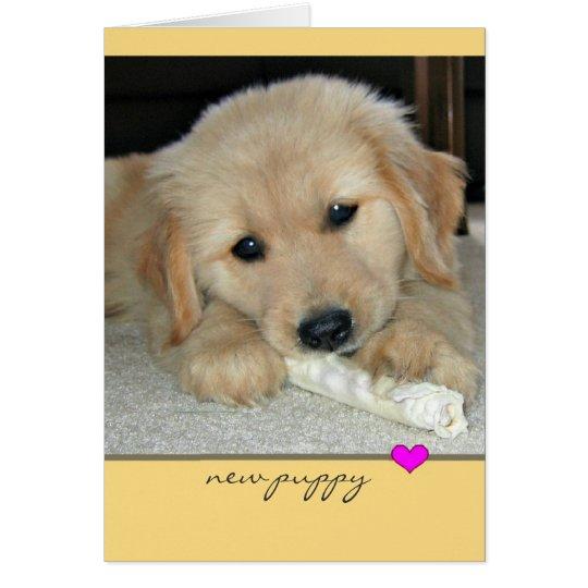 Golden Retriever New Puppy Greeting Card