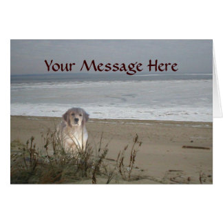 Golden Retriever On The Beach Greeting Card