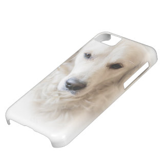 Golden retriever (on white) cover for iPhone 5C