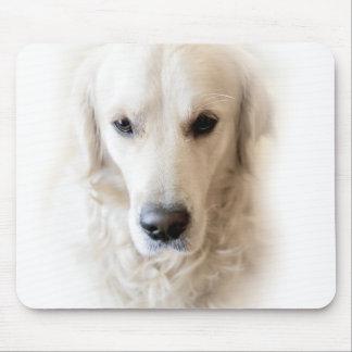 Golden retriever (on white) mouse pad