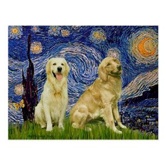 Golden Retriever Pair 3 - Starry Night Postcard
