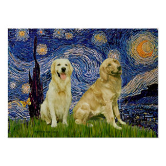 Golden Retriever Pair 3 - Starry Night Poster