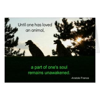 Golden Retriever Pet Sympathy Card