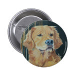 Golden retriever pins