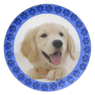 Golden Retriever Plate