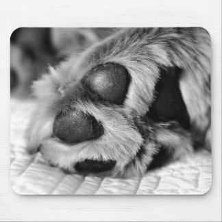 Golden Retriever Polar Paws Mousepad