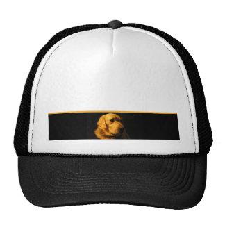 Golden Retriever Portrait Cap Trucker Hat