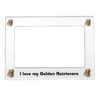 Golden Retriever portrait photo Frame Magnet