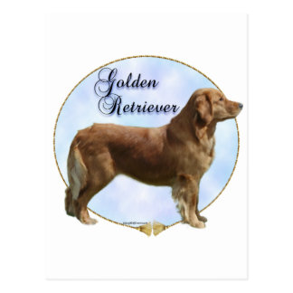 Golden Retriever Portrait Postcard