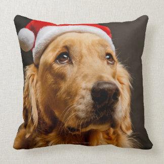 Golden Retriever posing for his Christmas Throw Pillow