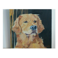 Golden Retriever Postcard