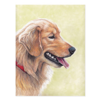Golden Retriever Profile Dog Art Postcard