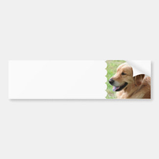 Golden Retriever Pup Bumper Stickers