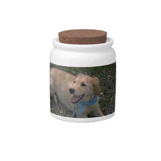 Golden Retriever Pup Dog Treat Candy Jar