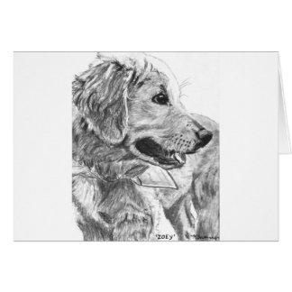 Golden Retriever Pup Drawing Cards