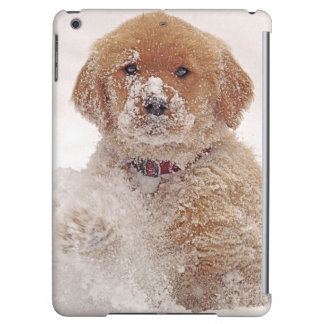 Golden Retriever Pup in Snow iPad Air Cover