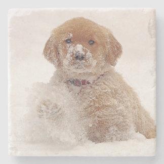 Golden Retriever Pup in Snow Stone Coaster