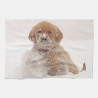 Golden Retriever Pup in Snow Towel