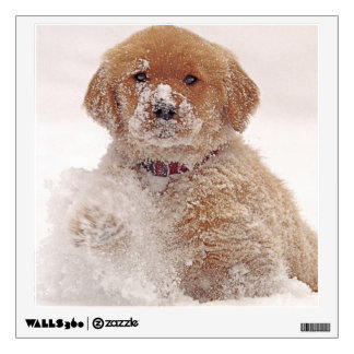 Golden Retriever Pup in Snow Wall Decal