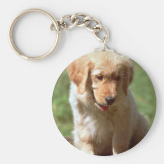 Golden Retriever pup Keychain