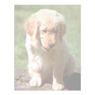 Golden Retriever pup Letterhead