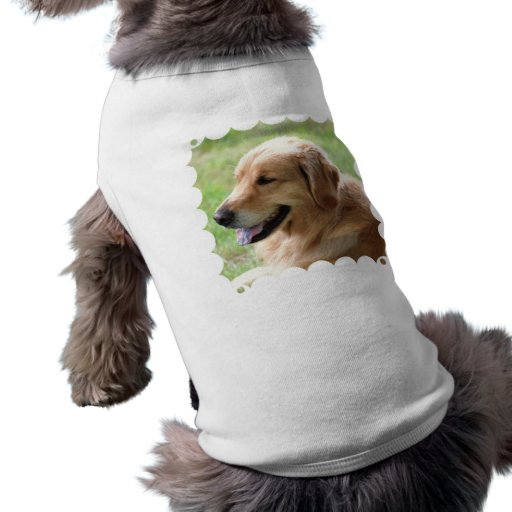 Golden Retriever Pup Pet Shirt