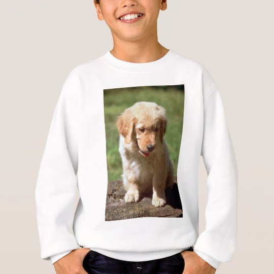 Golden Retriever pup Sweatshirt