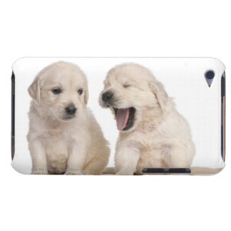 Golden Retriever puppies (4 weeks old) iPod Touch Case-Mate Case