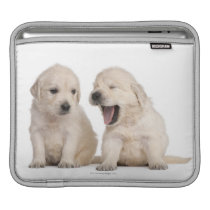 Golden Retriever puppies (4 weeks old) Sleeve For iPads