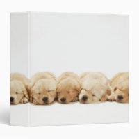 Golden Retriever Puppies Binder