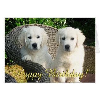 Golden retriever puppies birthday card