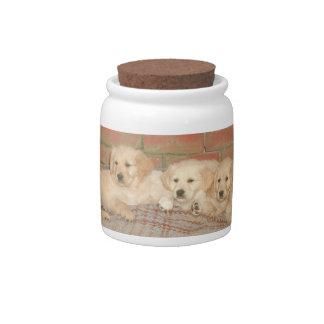 Golden Retriever Puppies Dog Treat Candy Jar