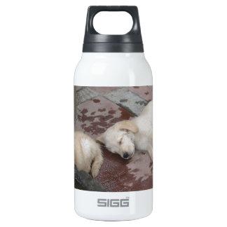 Golden Retriever puppies Insulated Water Bottle
