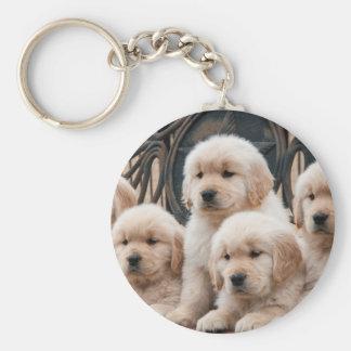 Golden Retriever Puppies Keychain