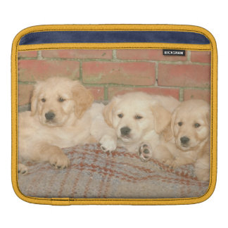 Golden Retriever Puppies Rickshaw Sleeve