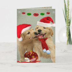 Golden Retriever Puppies Share Candy Cane Cards card