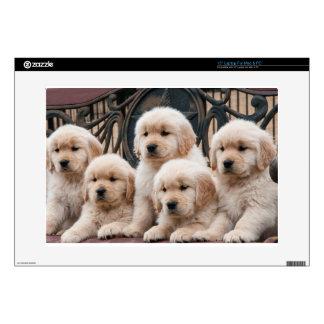 Golden Retriever Puppies Laptop Skins