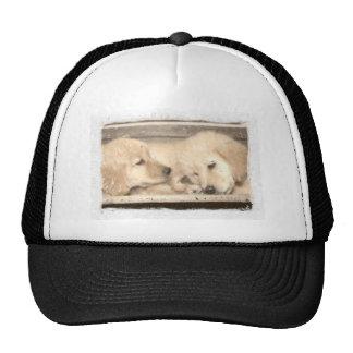Golden Retriever Puppies Trucker Hat
