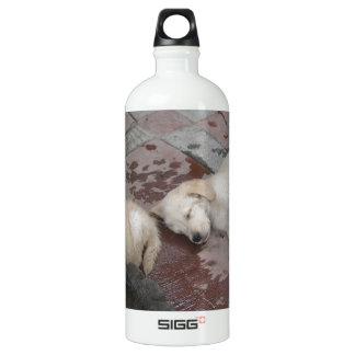Golden Retriever puppies Water Bottle