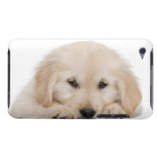 Golden retriever puppy (20 weeks old) barely there iPod case