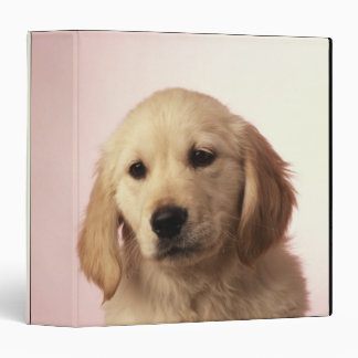 Golden Retriever Puppy 3 Ring Binder