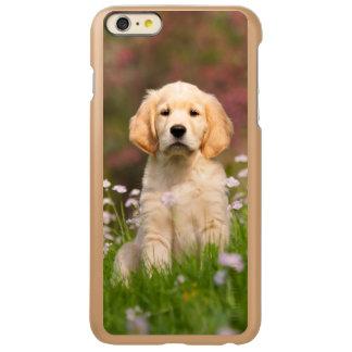Golden Retriever puppy a cute Goldie Incipio Feather® Shine iPhone 6 Plus Case